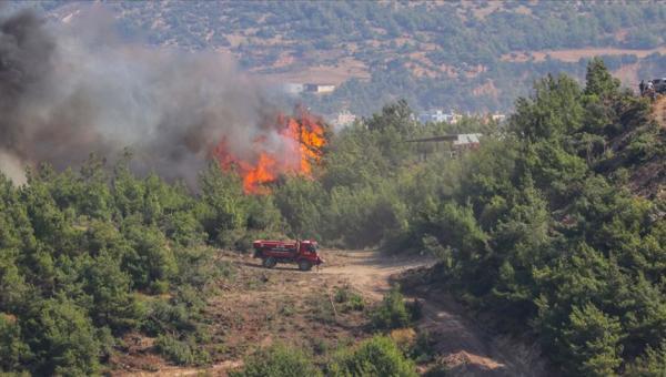 Hatay'daki orman yangınları